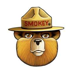 Smokey Bear Head Wall Cling firefighting, fire safety product, fire prevention, smokey, smokey bear, wall cling, smokey wall cling, durable, white vinyl, reusable, repositionable, self-adhesive